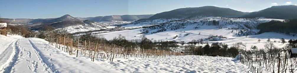 Limburg-Winter-Panorama